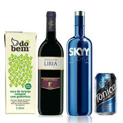 vinho-tinto-castillo-liria-vodka-grey-goose-sangria