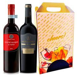 kit-vinhos-dia-dos-pais-avancado-mais-caixa-para-presente