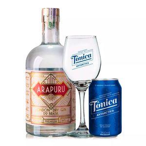 kit-drink-gin-tonica-antactica-bebida-brasileira-arapuru